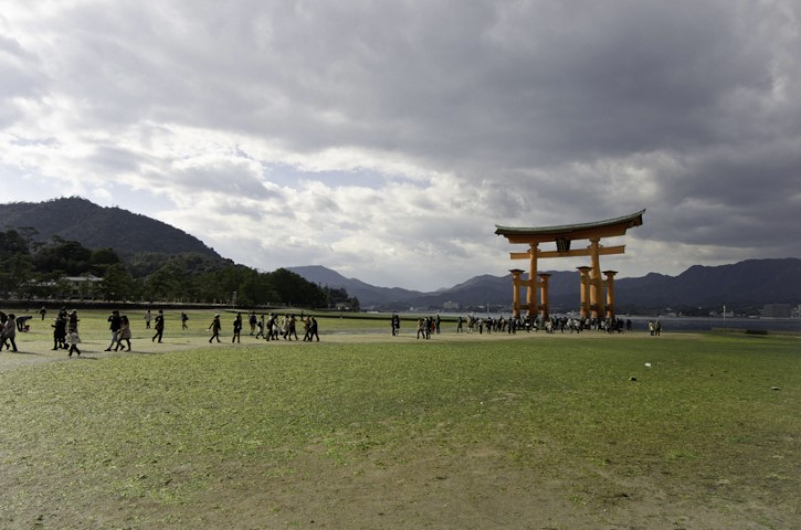 Tide out in Miyajima