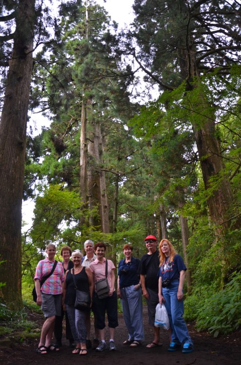 Group photo, Hakone Cedar Avenue